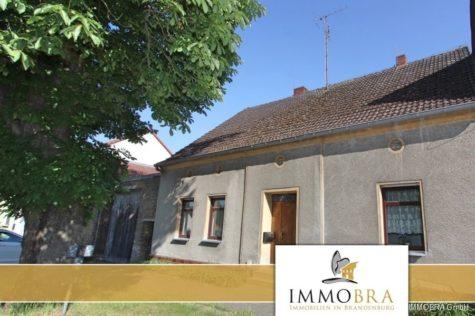 Einfamilienhaus mit großer Scheune und Pferdewiese in Golzow, 14778 Golzow, Haus
